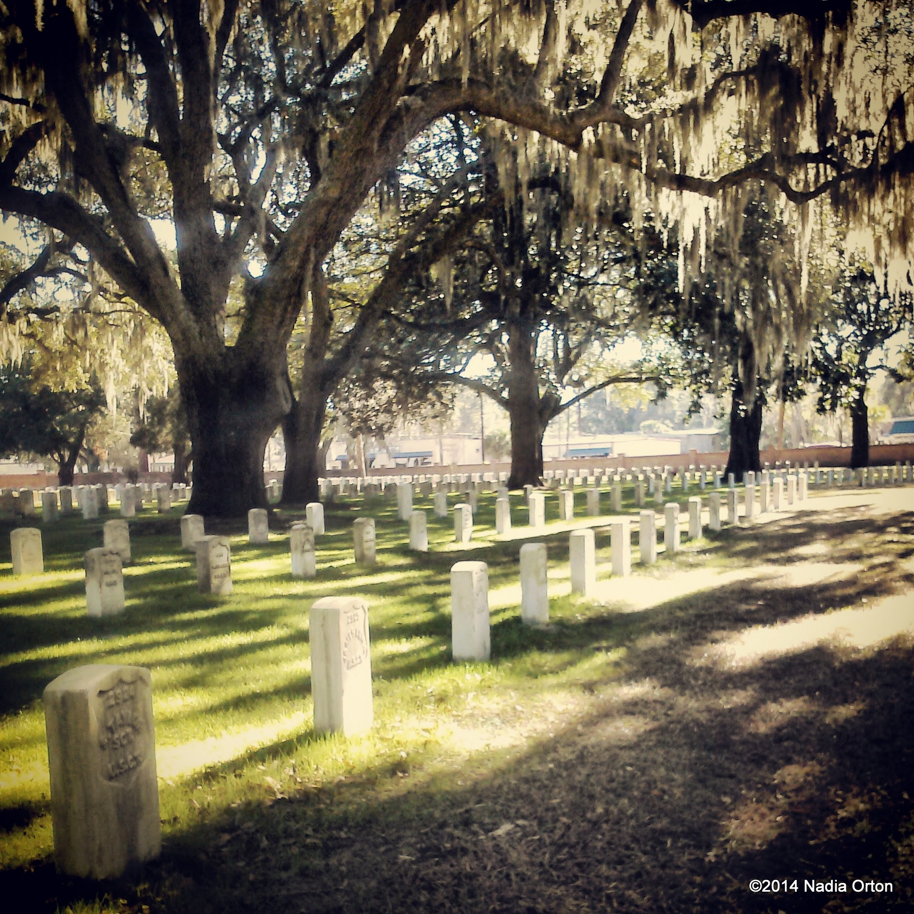 Protected: South Carolina Cemeteries