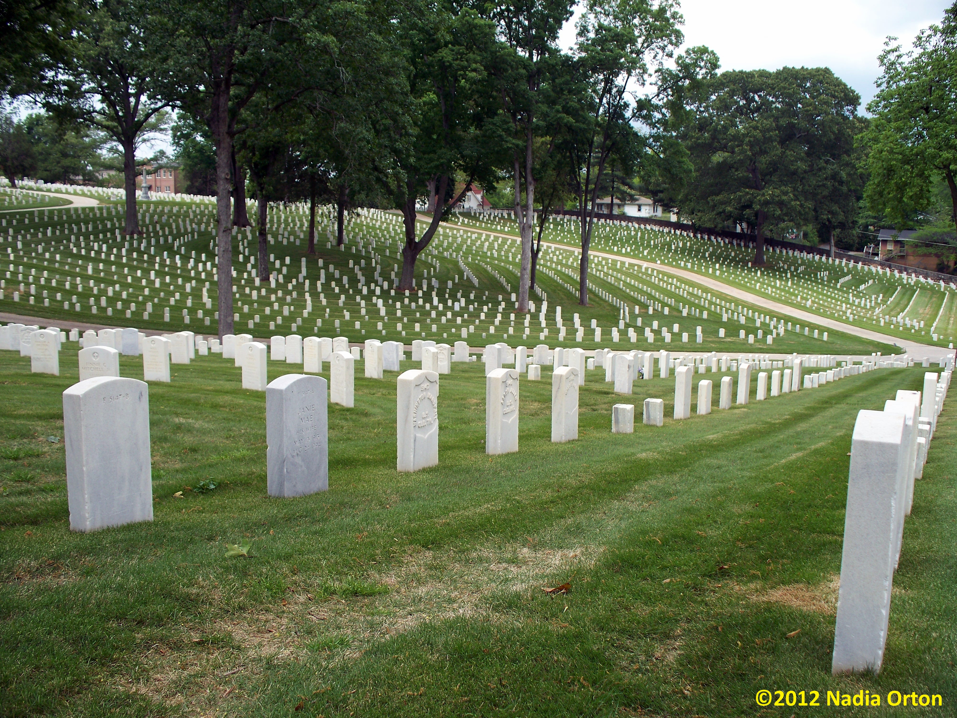 Cobb County, Georgia: United States Colored Troops, Marietta National Cemetery
