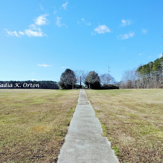 Wilson County, North Carolina: Beyond the academic; what remains of an ancestral African American Cemetery