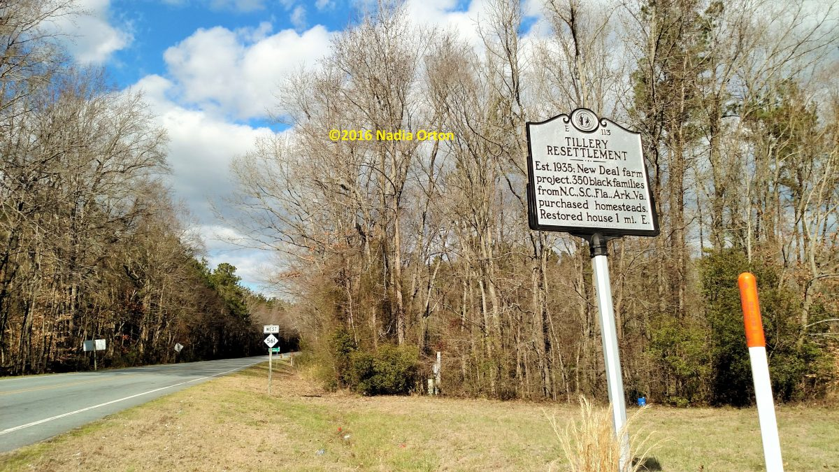 Halifax County, North Carolina: The Sledge Family, WWII Veterans, Enfield